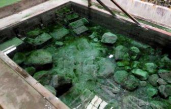 大分「寒の地獄温泉」!夏限定14度の冷泉の日帰り入浴が体験できる寒の地獄旅館ってどんな所?
